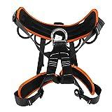 Voluxe Support de Taille d'escalade, Conception d'anneaux d'équipement Harnais d'escalade à Protection Fixe de Type Poteau, Rangement Facile Tourisme de randonnée pour Les Pompiers alpinistes