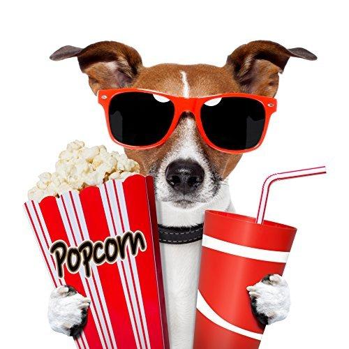 """6 Kino-Einladungen INKL. Umschlägen \""""CHICO - DER KINOGÄNGER\"""": lustiges Einladungskarten-Set für Kindergeburtstag im Kino / 6 Kinder Geburtstagseinladungen für Jungen und Mädchen inkl. 6 Briefumschlägen von EDITION COLIBRI"""
