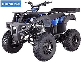 SmartDealsNow Powersports Adult & Kids ATV, Go-Kart, Dirtbike, Scooter, Quad, Motorcycle 49cc-250cc (ATV, 250cc)
