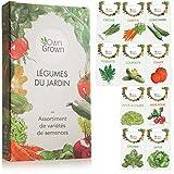 Kit de graines de légumes prêt à pousser OwnGrown, 10 légumes...