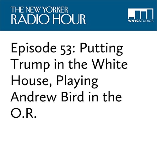 Episode 53: Putting Trump in the White House, Playing Andrew Bird in the O.R. audiobook cover art