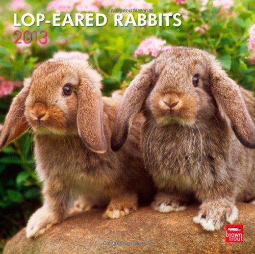 Lop-eared Rabbits 2013 - Kaninchen mit Schlappohren - Widderkaninchen - Original BrownTrout-Kalender