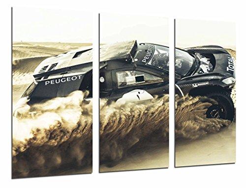 Cuadro coche carreras Rally desierto
