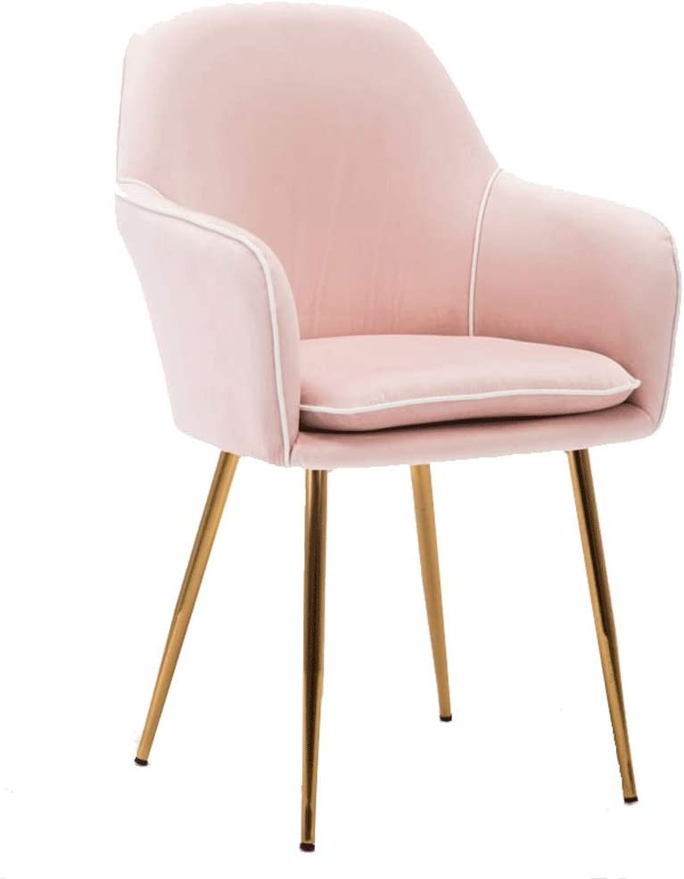 FETYDSE Living Houston Mall Room Arm Chair Max 69% OFF Soft C and Velvet Seat Dining Back