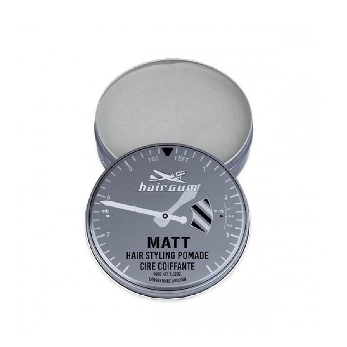 繁栄する切手予知hairgum(ヘアガム) Matt Pomade 100g ヘアガム マット 油性 ポマード グリース