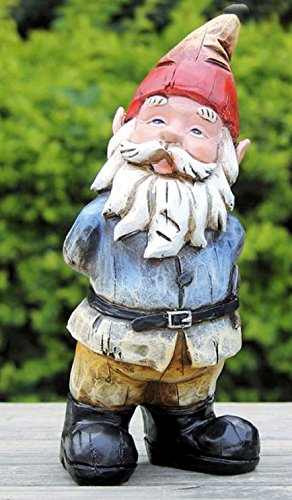Nain de jardin curieux - Hauteur : 22 cm