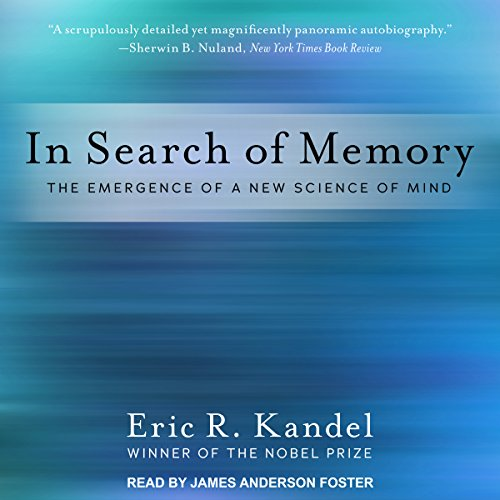 In Search of Memory audiobook cover art