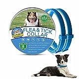 Collare Antiparassitario per Cani, Collare Antipulci Cane, Collare Antipulci e Zecche per Cani, Collare Regolabile Impermeabile, 8 Mesi di Protezione per Tutti i Tipi di Cani, 62 cm Taglia Unica