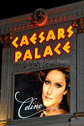 Celine Dion Foto ein 30,5 x 45,7 cm Hochwertiger Fotodruck der Celine Dion Neon Show Poster Caesars Palace Hotel Las Vegas Nevada USA Amerika Hochformat Foto Farbe Bild