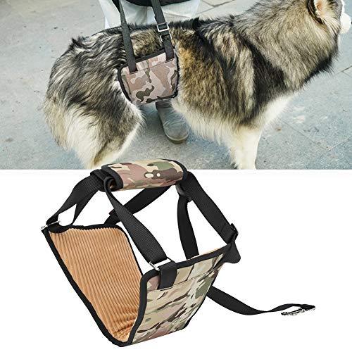 Bicaquu Asistente de elevación de Perros Resistente a mordeduras, Arnés de Soporte de elevación de Perros, para Perros discapacitados