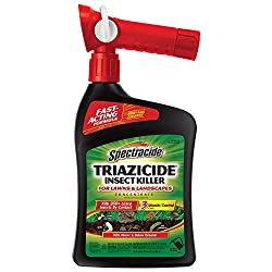 Spectracide Insect Killer Spray: photo
