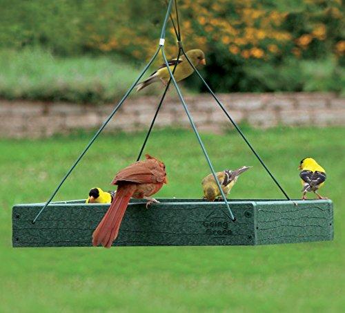Woodlink Going Green Platform Bird Feeder Model GGPLAT