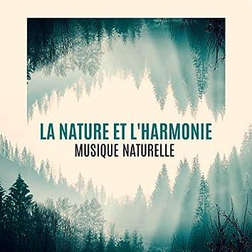 La nature et l'harmonie – Musique naturelle, Détendre avec différents sons de nature, Réduction du stress, Thérapie de guérison