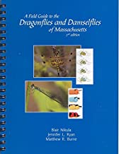 A field guide to the dragonflies and damselflies of Massachusetts