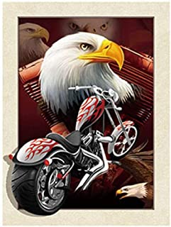 TripStan 3D Home Wall Art Decor Lenticular Pictures, Eagle Collection Holographic..