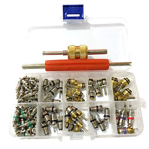 Milkvetch 103 Piezas Universal AC R12 & R134A Kit de Herramientas de InstalacióN de Removedor de NúCleo de VáLvula de Aire Acondicionado con 2 Herramientas de ExtraccióN