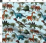 Dinosaurier, Stegosaurus, Fossil, Jura, Eidechse, Reptil,