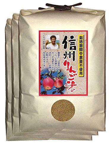 【新米】【玄米】信州りんご米 こしひかり 15kg(5kg×3) 令和2年産