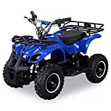 Pocketquad Miniquad Quad Kinderquad Quad Pocketbike 800w Blau RV- Racing
