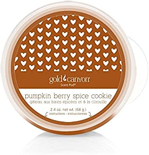 Gold Canyon Candle Pumpkin Berry Spice Scent Pod