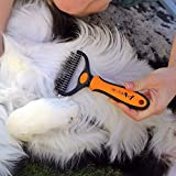 Wellness Fellpflege Hundebürste von BELLE&BLU - 7