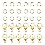 PandaHall 120 anillos de acero inoxidable 304 de 4 mm con 60 cierres de pinza de langosta para pendientes, pulseras, collares, colgantes, joyas, manualidades, color dorado