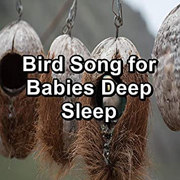 Bird Song for Babies Deep Sleep