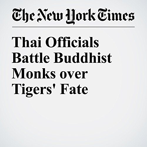 Thai Officials Battle Buddhist Monks over Tigers' Fate cover art