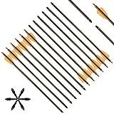 """DZGN 15 Pulgadas Crossbow Perno Flechas de Carbono Ballesta Flechas con 2"""" Vanes Sustituido Arrowhead Tip para Crossbow de Disparo Hunting,36 Pack"""