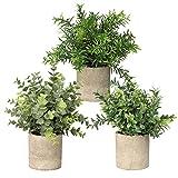 Linkstyle 3 Pack Mini Plantas Artificiales en macetas Faux Fake Greenery Eucalyptus Rosemary Plants para Home Office Table Desk Decoration Interior Outdoor Decor