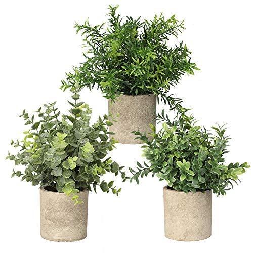 3 Pack Mini Topf Künstliche Pflanzen Faux Fake Grün Eukalyptus Rosmarin Pflanzen für Home Office Tisch Schreibtisch Dusche Küche Regal Schlafzimmer Badezimmer Dekoration Indoor Outdoor Dekor