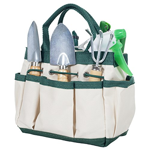 Pure Garden 50-132 Mini Repotting Kit and Carrying Tote Bag