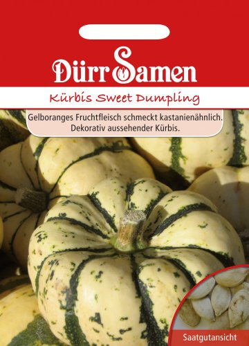 Dürr Samen 1011 Kürbis Sweet Dumpling (Kürbissamen)