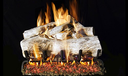 Fantastic Deal! Real Fyre 30-inch Mountain Birch Vented Gas Logs Bundled with G45 Burner Kit (Natura...
