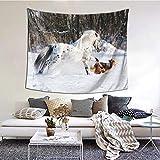 Tapiz de Pared,Legendary Appaloosa Pony And Sable Border Collie Runs Gallop In Winter Photo Tapestry (Colgante de Pared)Decoración de Pared Mural del hogar para Dormitorio Sala de Estar 152cmx102cm