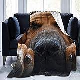 Popcorn In Spring Manta de Tiro Suave y acogedora para Perros Bloodhound, Mantas Sherpa Fleece para el hogar
