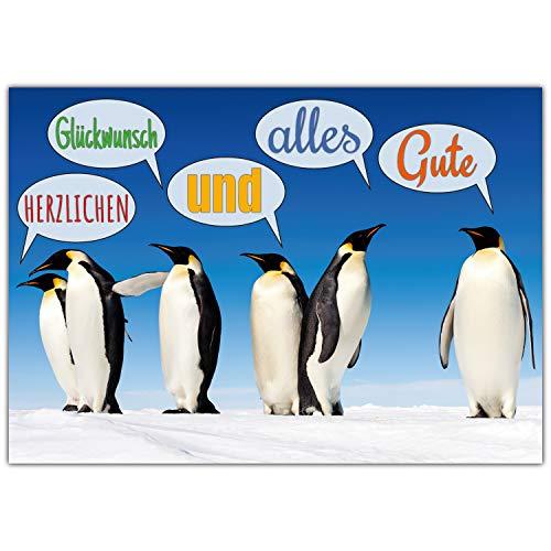 A4 XXL Glückwunschkarte PINGUINE mit Umschlag - edle Klappkarte geeignet für alle Anlässe wie Geburtstag Hochzeit Baby Jubiläum Karte von BREITENWERK