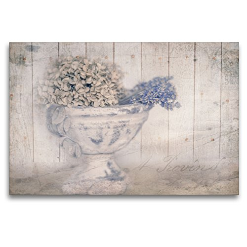 CALVENDO Premium Textil-Leinwand 120 x 80 cm Quer-Format Hortensie, Leinwanddruck von Foto Augenblicke-Zaubern mit Licht