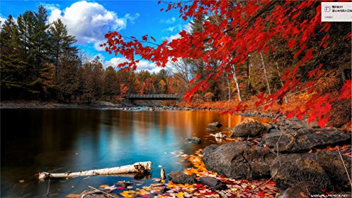 Lake Scenery Jigsaw Puzzle-1000 Pieces Children's Jigsaw Puzzle-DIY Jigsaw Puzzle Game for Adults
