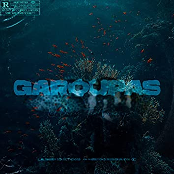 Garoupas