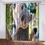 Salón Cortinas Opacas Koala Animal Cortinas Plisadas a Lápiz Cortinas Opacas de Reducción de Ruido para Dormitorio Sala de Estar Oficina del Hotel 280(W) x250(H) cm