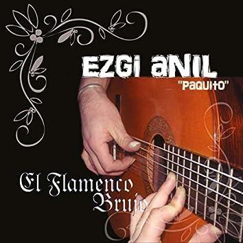 El Flamenco Brujo