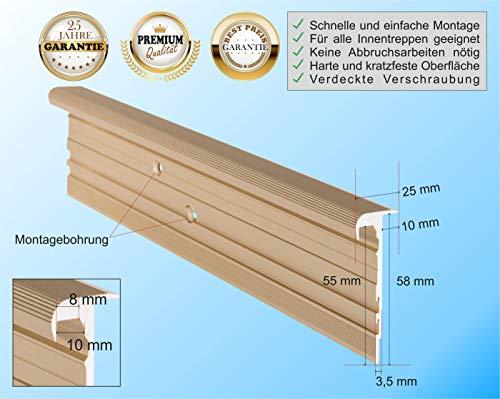 RenoProfil 110 cm Treppenprofil MULTIVERSAL-25 für alle Bodenbeläge von 6-22 mm - Treppenkantenprofil für Treppenverkleidung und Treppenrenovierung - Farbe: Messing-Sand