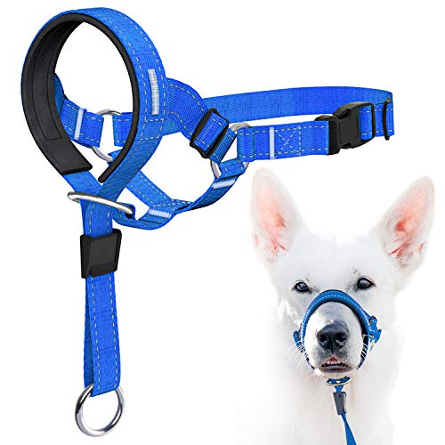 GoodBoy Dog Head Halter Blue Nylon (Blue, 3)
