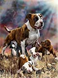 GHGXGJ DIY Diamant Malerei Pit Bull Terrier Hund Vollrunde Bohrer Strass Stickerei Mosaik Bilder Küche Home Hobby Kunsthandwerk 30 * 40cm