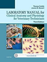 Best laboratory manual for clinical anatomy and physiology Reviews