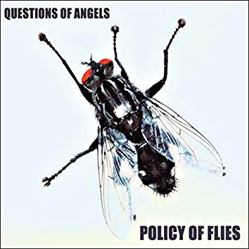 Policy of Flies