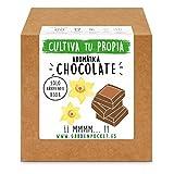 Garden Pocket - Kit Cultivo AROMÁTICA Chocolate