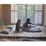 (Aideaz) 特大 蚊帳 3m 6畳 大きい キング サイズ キャンプ アウトドア ベビー ムカデ 防虫 対策 (3m ホワイト 開閉可 本体のみ)