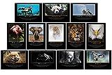 GREAT ART® Edle Motivationsposter – Set aus 12 Postern